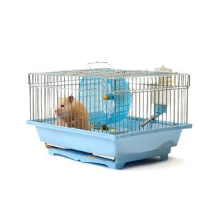 Κλουβάκια μικρών ζώων